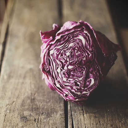 Picture of Cabbage Red 1.250 KG - 1.750 KG