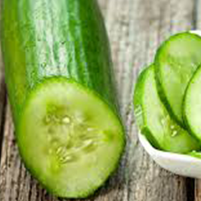 Picture of Cucumber