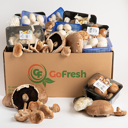Picture of Mix Mushroom Box