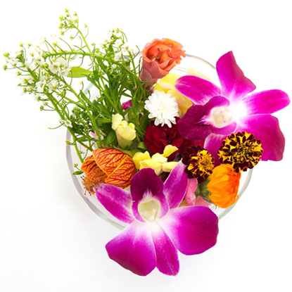 Picture of Edible Flower