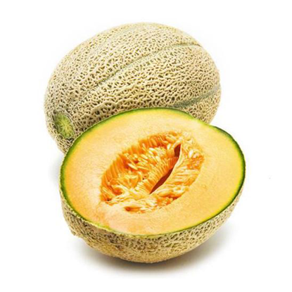 Picture of Rock Melon