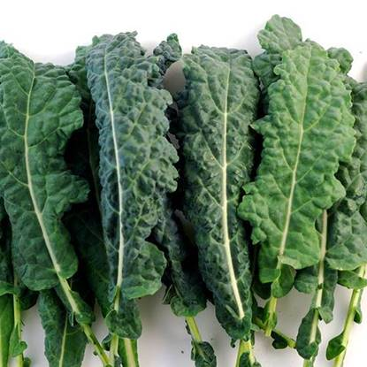 Picture of Kale Usa -Per KG
