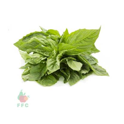 Picture of Basil Local