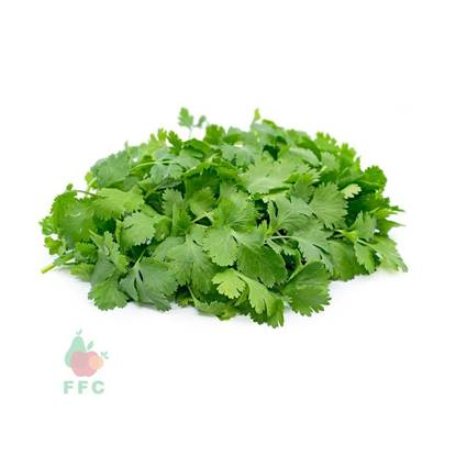 Picture of Coriander Local