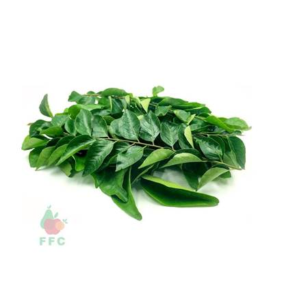 Picture of Curry Leaves Fresh India