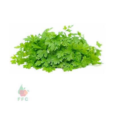 Picture of Parsley Arabic Local