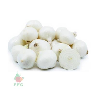 Picture of Onion White USA