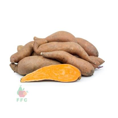 Picture of Potato Sweet Egypt