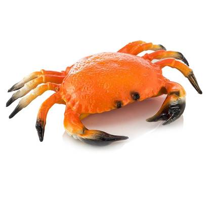 Picture of Crab 150/200-10*1KG