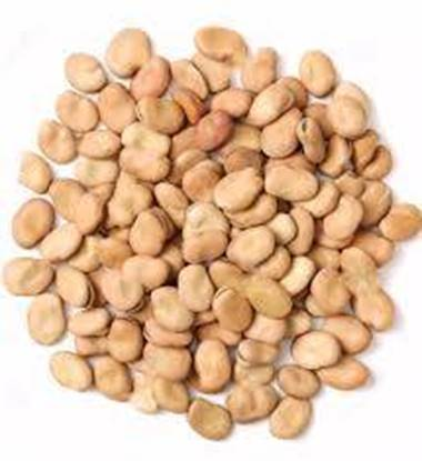 Picture of Beans Whole Egypt    ( 1 KG )