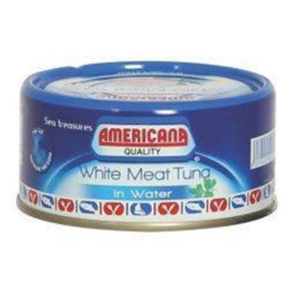 Picture of Americana White Tuna with water 4*160 g