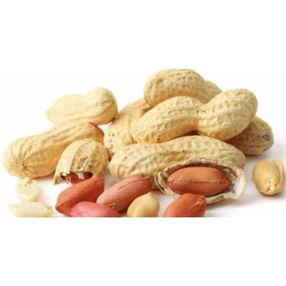 Picture of peanut raw w\shell per kg