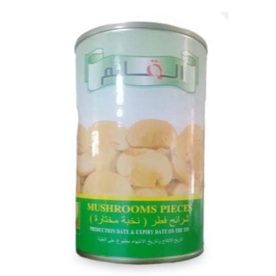 صورة Al Qaem Mushroom Pieces 24 x 425g