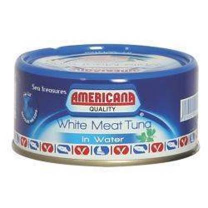 Picture of Americana White Tuna with water 48*160 g