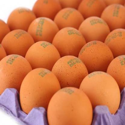 Picture of Yasmin Farms Free Range Brown Eggs Tray 30 pcs