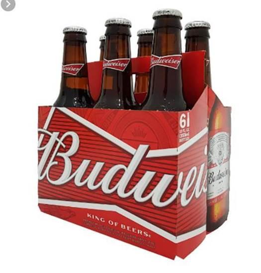 Picture of Budweiser - Bottel 355 ml ( 6 Pcs )*4