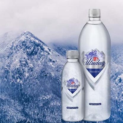 Picture of Uludag Premium Spring Water 1000 ml