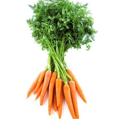 Picture of Carrots Mini With Tops - Holland,Africa (200GM)