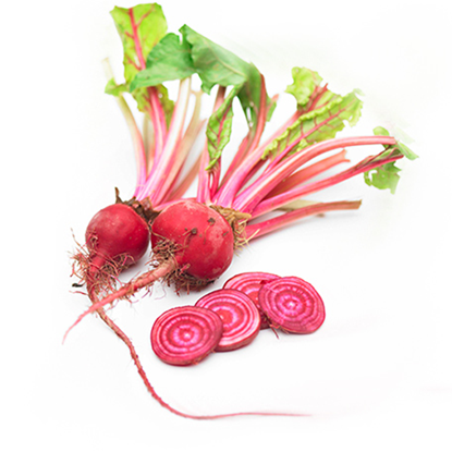 Picture of Beetroot Chioggia - Holland (500GM)