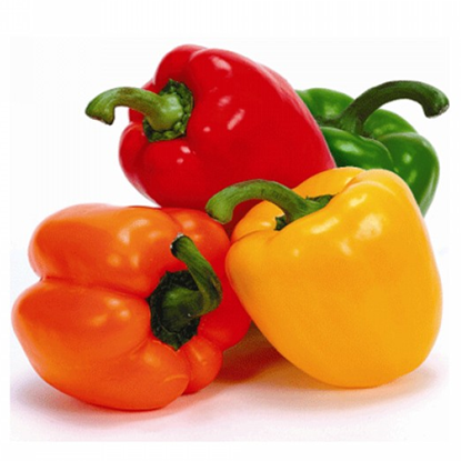 Picture of Capsicum Mix - Holland (400GM)