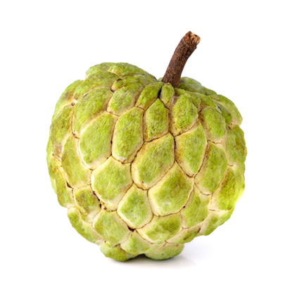 Picture of Custard Apple - lebanon , Australia , Spain , egypt (1KG)