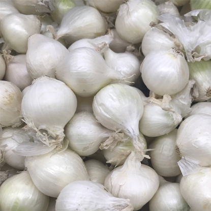 Picture of White Pearl Onions - USA , Holland (200GM)