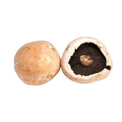 Picture of Mushroom Portobellini - Holland (500GM)