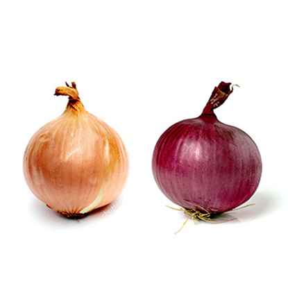 Picture of Onion Golden - Spain, Australia (1KG)