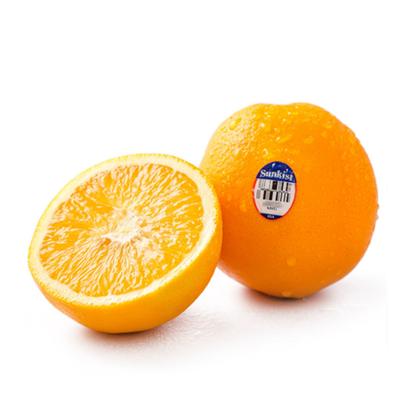 Picture of Orange Premium Sunkist Navel  - USA (1KG)